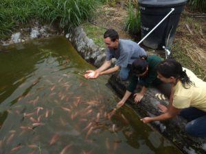 Baltazar pescando con las manos