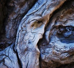 wood-185476_640